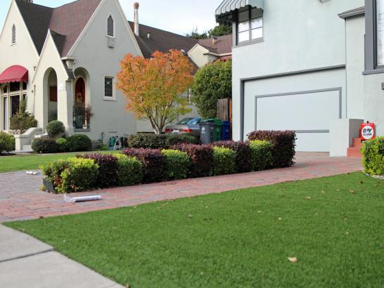 Artificial Grass Photos: Artificial Grass Carpet Bystrom, California Garden Ideas, Front Yard Landscaping Ideas