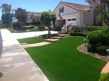 Artificial Grass Photos: Artificial Grass Carpet Hickman, California Gardeners, Front Yard Ideas