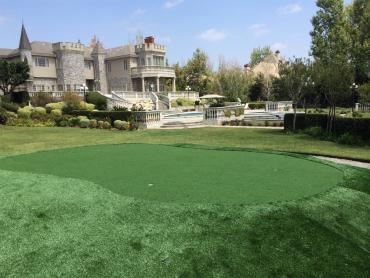 Artificial Grass Empire, California Landscaping Business, Front Yard Landscaping Ideas artificial grass