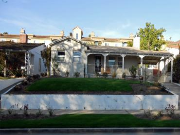 Artificial Grass Photos: Artificial Grass Installation Bret Harte, California Landscape Photos, Front Yard Ideas