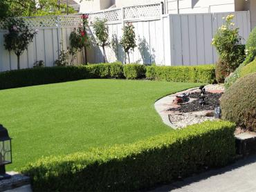 Artificial Grass Photos: Artificial Grass Installation Hickman, California Design Ideas, Backyard