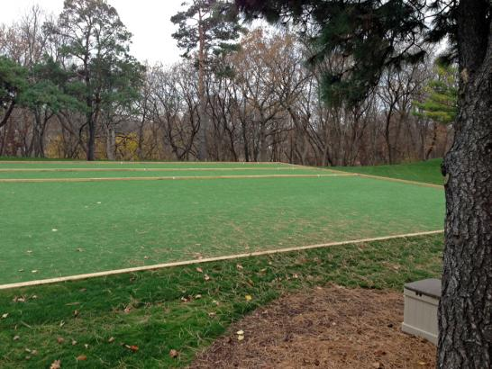 Artificial Grass Photos: Artificial Grass Installation West Modesto, California Landscape Design