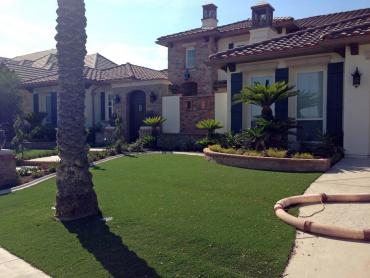 Artificial Grass Photos: Artificial Lawn Westley, California Landscaping Business, Front Yard Design