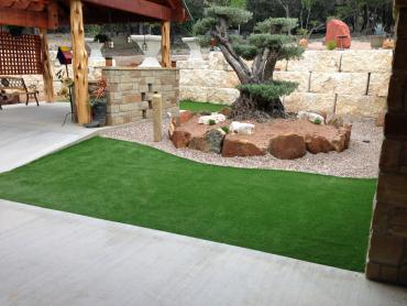 Artificial Grass Photos: Artificial Turf Cost Turlock, California Design Ideas, Small Backyard Ideas