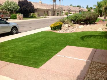Artificial Turf Cost West Modesto, California Landscape Photos, Small Front Yard Landscaping artificial grass