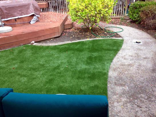 Artificial Grass Photos: Artificial Turf Installation Riverdale Park, California Roof Top, Beautiful Backyards
