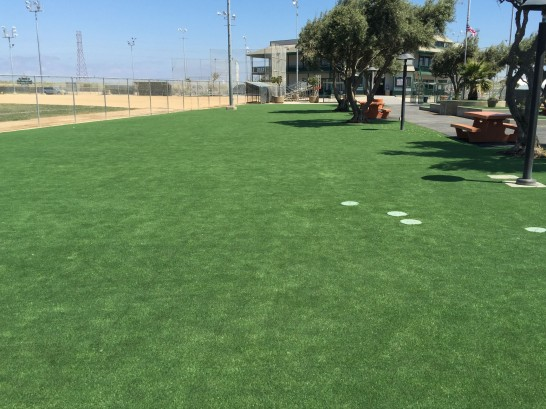 Artificial Grass Photos: Artificial Turf Oakdale, California Roof Top, Recreational Areas