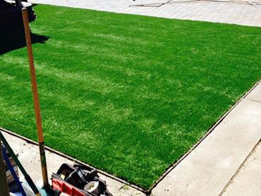 Artificial Grass Photos: Best Artificial Grass Riverbank, California City Landscape