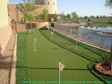 Fake Grass Bret Harte, California Garden Ideas, Backyards artificial grass