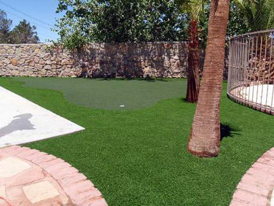 Fake Lawn Ceres, California Indoor Putting Green, Backyard Makeover artificial grass
