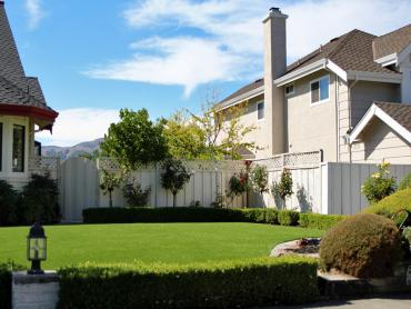 Artificial Grass Photos: Fake Lawn Riverdale Park, California Landscaping