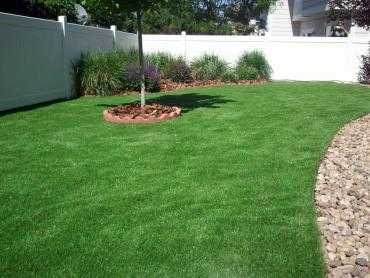 Faux Grass Hughson, California Design Ideas, Backyards artificial grass