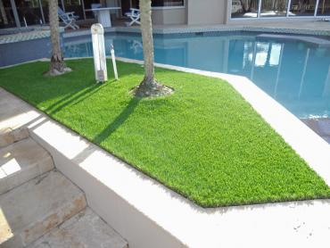 Artificial Grass Photos: Grass Carpet Bystrom, California Design Ideas, Backyard Garden Ideas