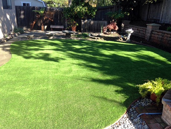 Grass Carpet West Modesto, California Pet Paradise, Beautiful Backyards artificial grass