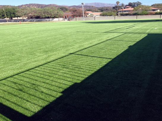 Artificial Grass Photos: Grass Carpet Westley, California Lawn And Landscape