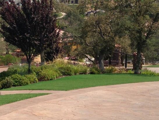 Artificial Grass Photos: Grass Installation Hickman, California Lawn And Garden, Small Backyard Ideas