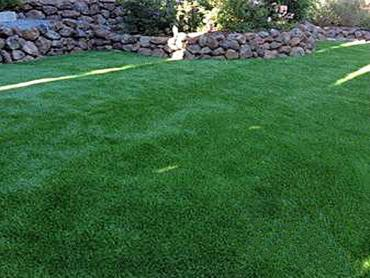 Artificial Grass Photos: Grass Turf East Oakdale, California Dogs, Backyard Landscape Ideas