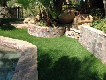 Artificial Grass Photos: Grass Turf Riverbank, California Pet Paradise, Backyard Landscaping Ideas