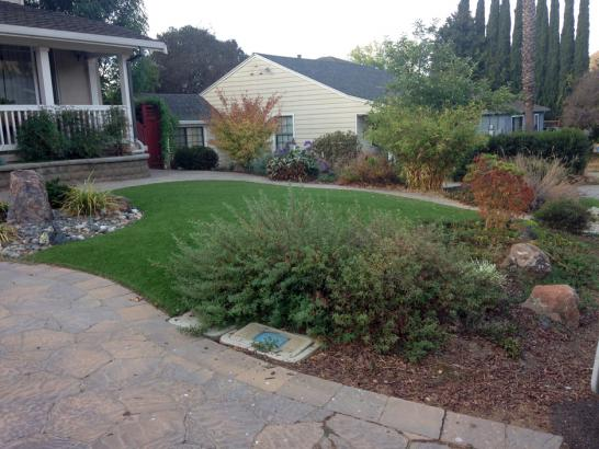 Artificial Grass Photos: How To Install Artificial Grass Riverbank, California Roof Top, Front Yard Landscaping Ideas