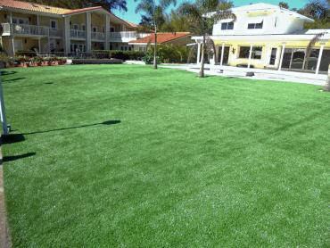 Artificial Grass Photos: Installing Artificial Grass Crows Landing, California Landscaping, Natural Swimming Pools