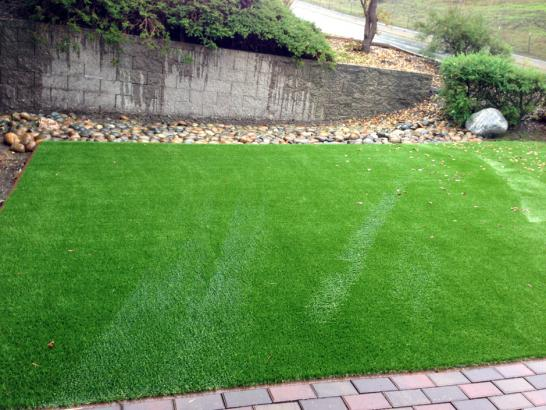 Artificial Grass Photos: Installing Artificial Grass Hughson, California Dog Run, Backyard Landscaping