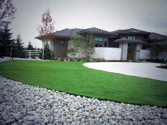 Artificial Grass Photos: Outdoor Carpet Crows Landing, California Backyard Playground, Front Yard Landscaping Ideas