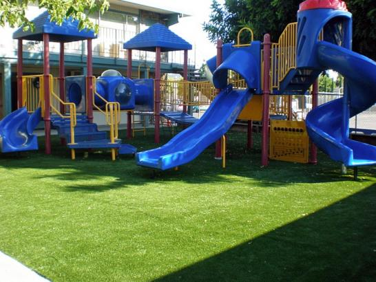 Artificial Grass Photos: Outdoor Carpet Denair, California Rooftop, Commercial Landscape