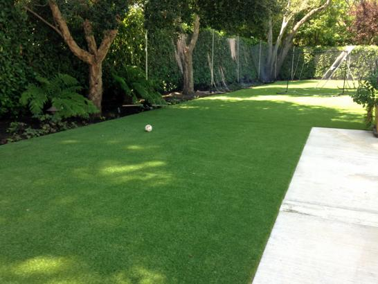 Artificial Grass Photos: Plastic Grass Bret Harte, California Landscape Ideas