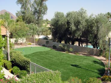 Artificial Grass Photos: Plastic Grass Hughson, California Outdoor Putting Green, Backyard Designs