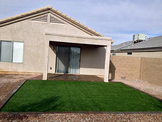 Artificial Grass Photos: Plastic Grass Keyes, California Dog Hospital, Backyard Makeover