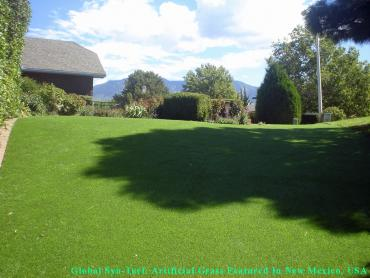 Synthetic Grass Cost Ceres, California Dog Parks, Backyard Ideas artificial grass