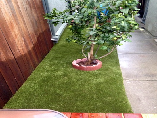 Artificial Grass Photos: Synthetic Grass Cost Oakdale, California Backyard Deck Ideas, Backyard Landscape Ideas