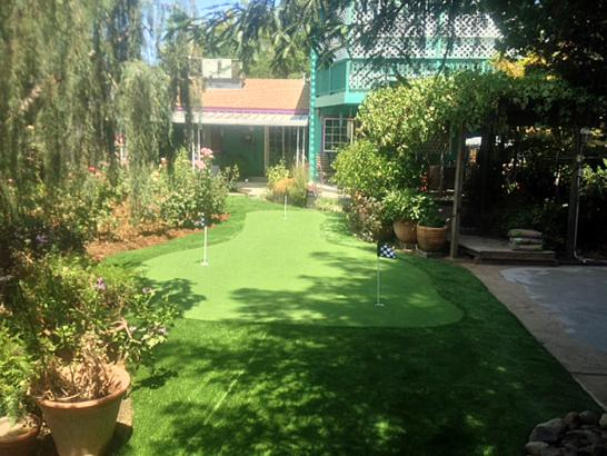 Artificial Grass Photos: Synthetic Grass Cost Patterson, California Backyard Playground