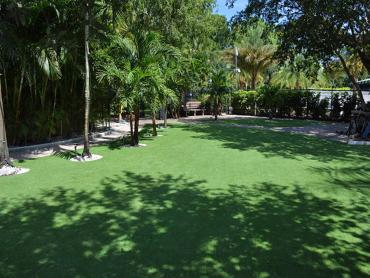 Synthetic Grass Cost Valley Home, California City Landscape, Commercial Landscape artificial grass