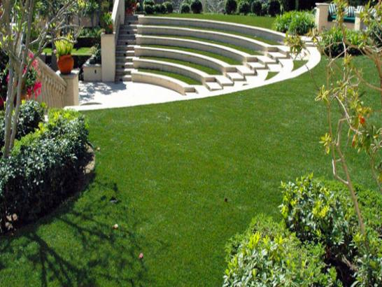 Artificial Grass Photos: Synthetic Grass Modesto, California Design Ideas