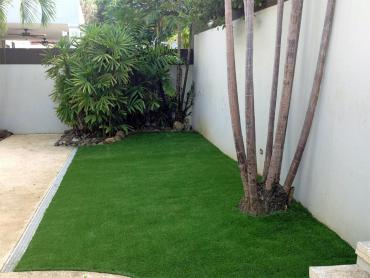 Artificial Grass Photos: Synthetic Lawn Bystrom, California Backyard Playground, Backyard Landscaping Ideas