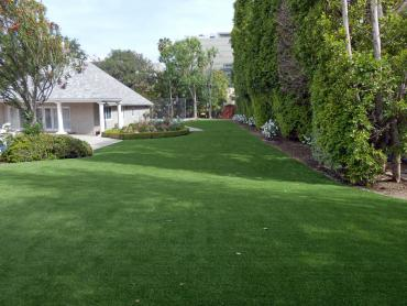 Artificial Grass Photos: Synthetic Lawn Riverdale Park, California Dog Running, Small Front Yard Landscaping