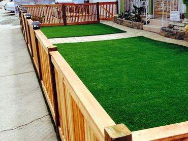 Synthetic Turf Newman, California Lawns, Front Yard Landscaping artificial grass