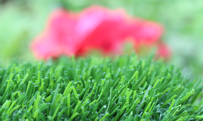 Artificial Grass Evergreen-80 Artificial Grass Modesto California