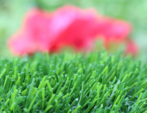 Artificial Turf For Child Care Centers