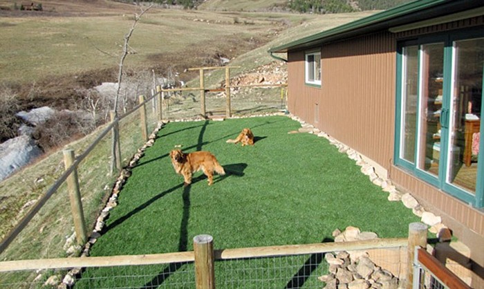 Pet Grass, Artificial Grass For Dogs in Modesto